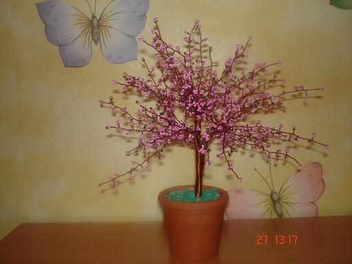 Скачать картотеку комнатных растений
